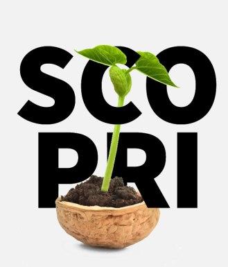 scopri_wp
